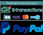 logo-paiement-e-transaction-paypal-300x234