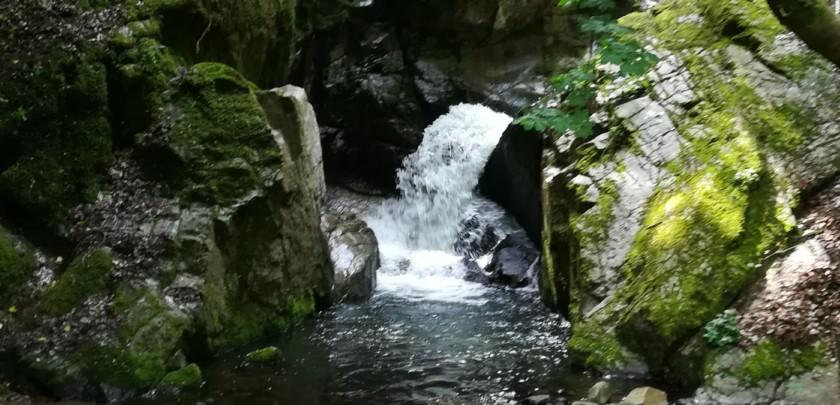 Toc a la nymphe en petite rivière : conseils, astuces, approche pour réussir